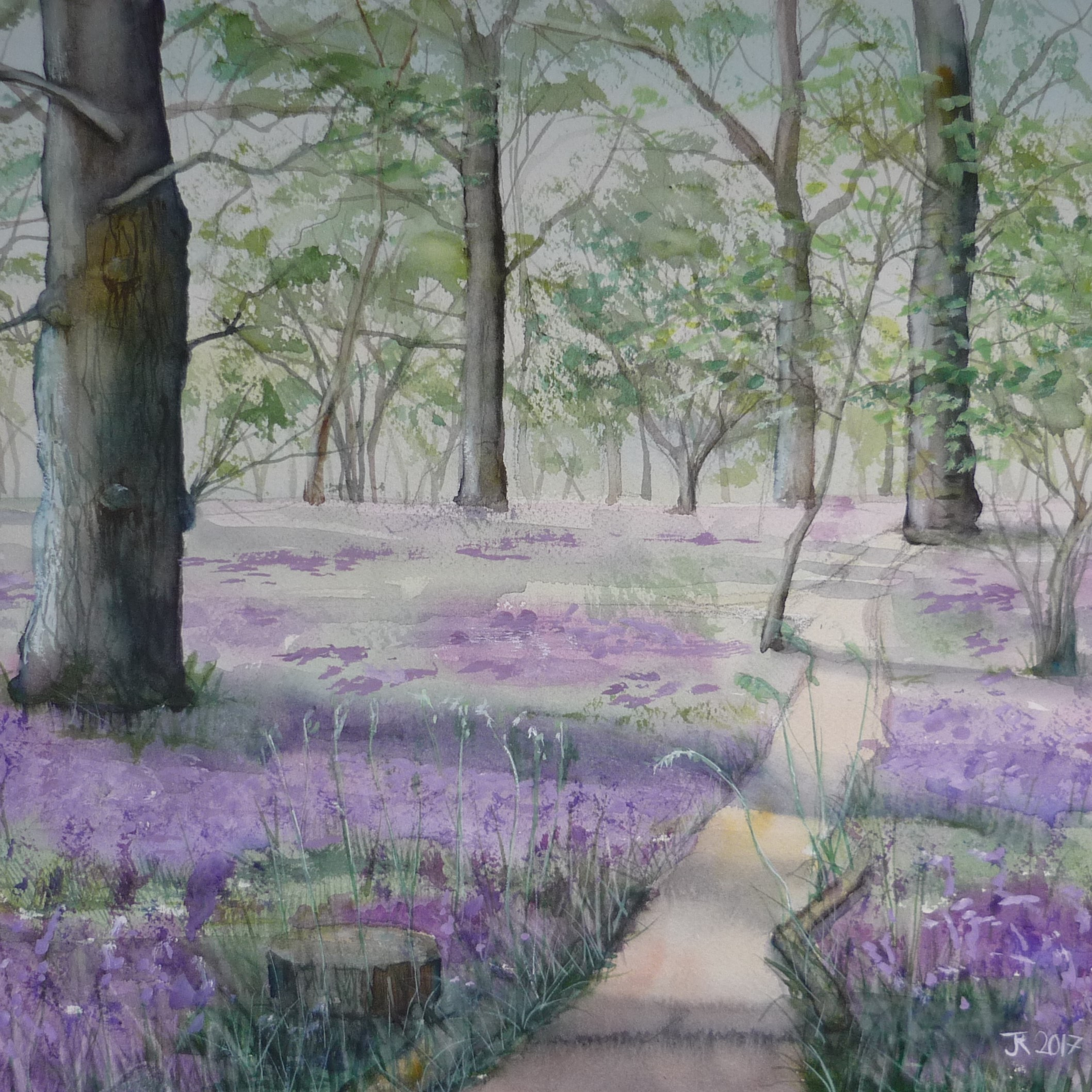 /uploads/courses/4319-02/Bluebells_in_Perivale_Wood_square.jpg